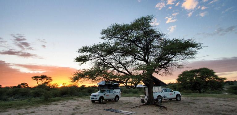 Avis Safari vehicles for hire